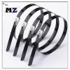 Wuhan MZ Electronic Co.,Ltd   008613247193001